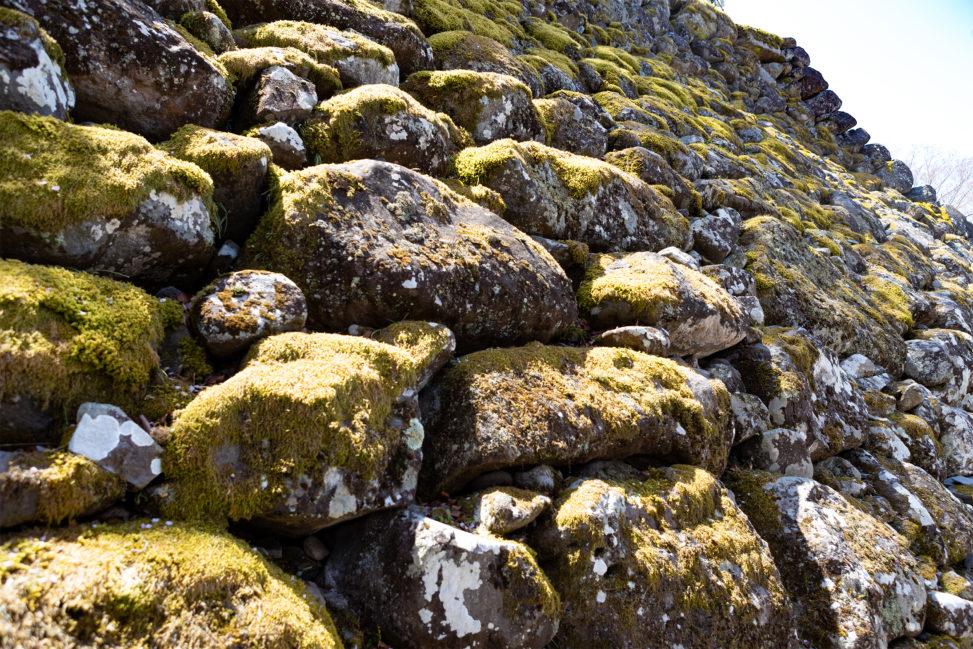 苔(こけ)の石垣の写真素材