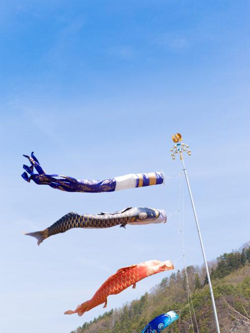 こどもの日の鯉のぼりの写真素材
