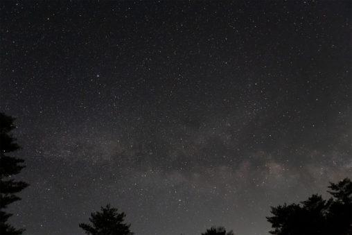 星空と木のシルエットの写真素材