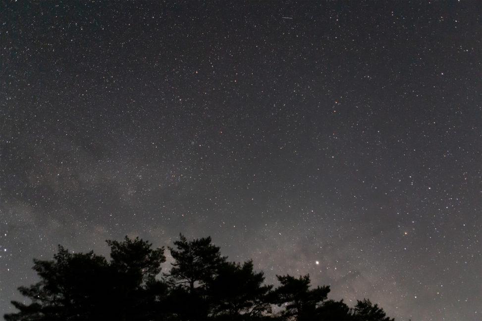 星空と木のシルエット02の写真素材