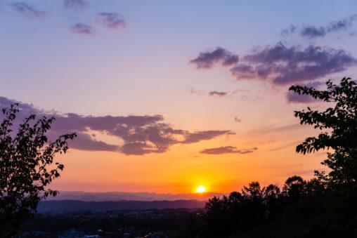 木の陰と山に沈む夕日(夕焼け)の写真素材