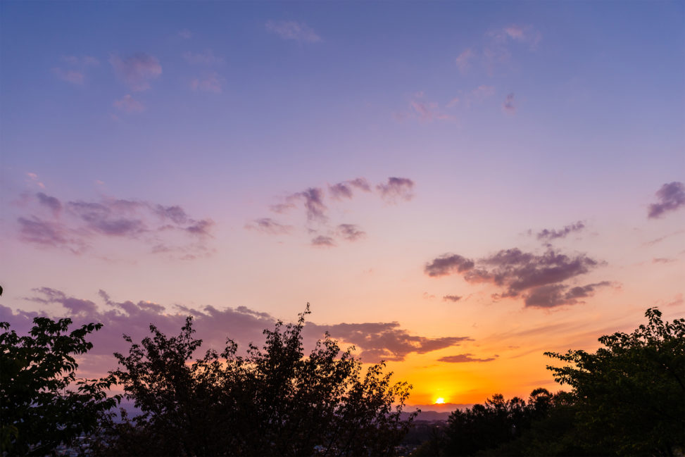 木の陰と山に沈む夕日(夕焼け)02の写真素材