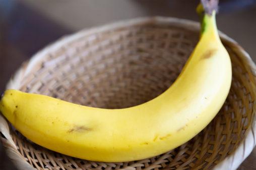 バナナ(1本)の写真素材