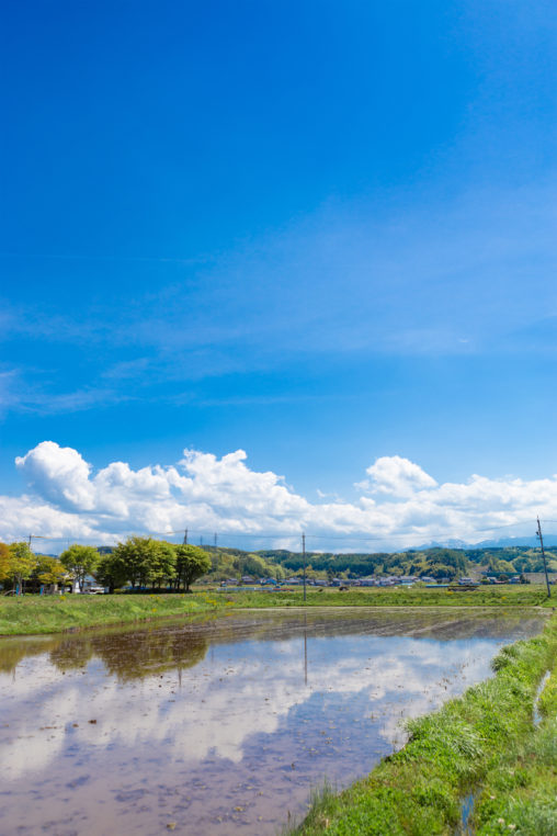 田植え前の水田と空の風景の写真素材