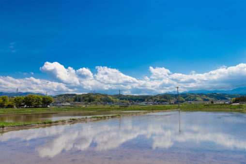 田植え前の水田と空の風景02の写真素材