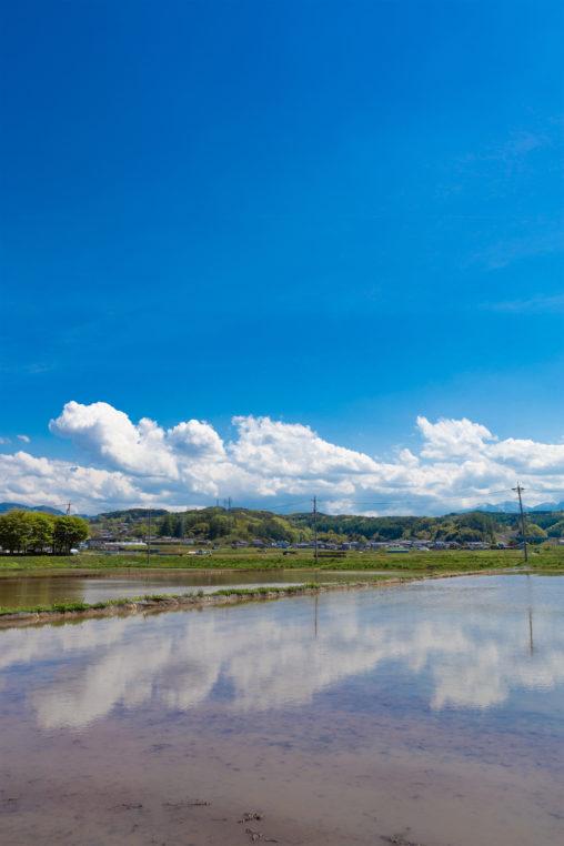 田植え前の水田と空の風景03の写真素材