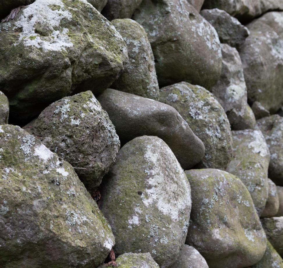 苔(こけ)の石垣02の写真素材