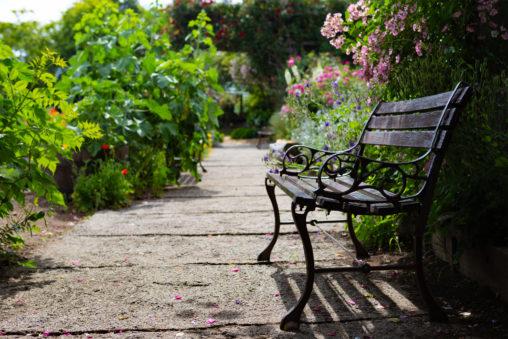 木陰のベンチの写真素材
