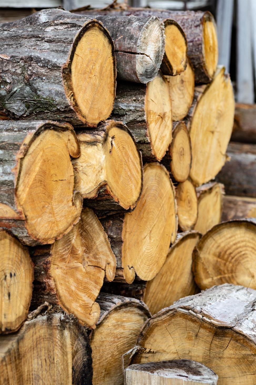 丸太・薪の写真素材