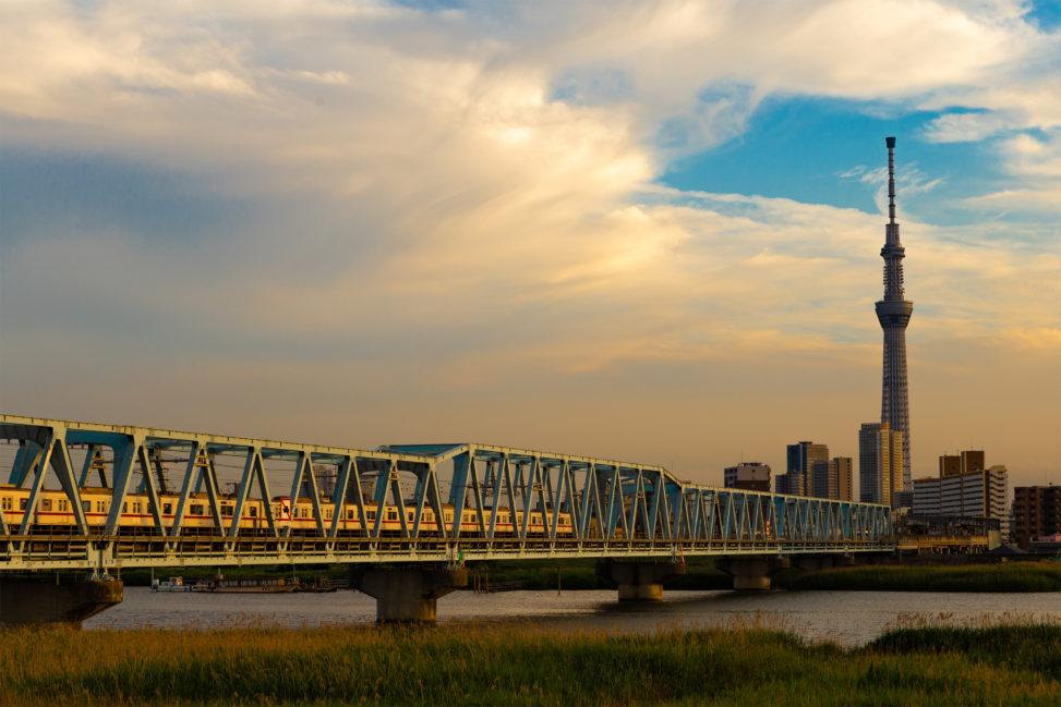 夕方の鉄橋を走る電車とスカイツリーの写真素材