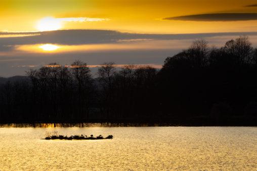 湖と夕日(夕焼け)03のフリー写真素材