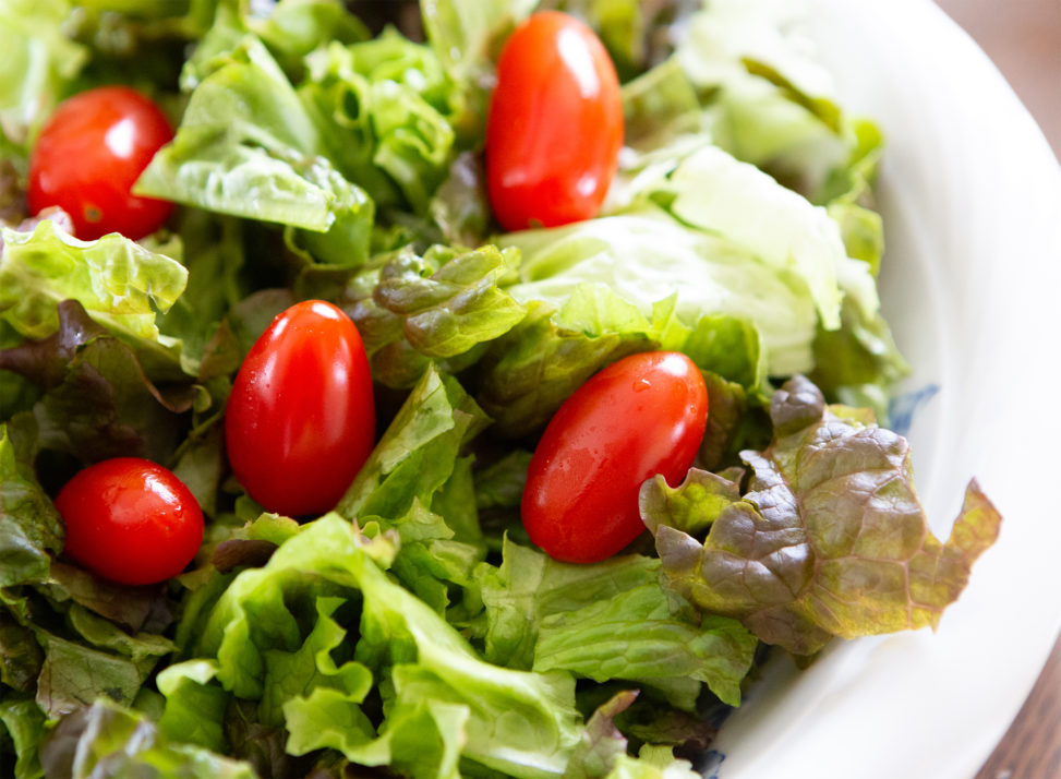 レタスとミニトマトのフレッシュサラダのフリー写真素材
