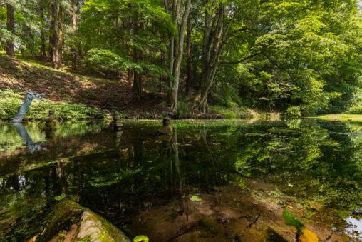 大沼の池のフリー写真素材