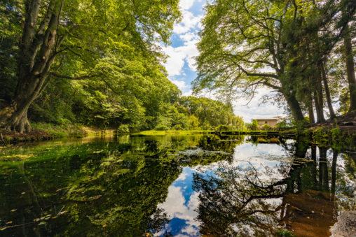 空が反射している大沼の池のフリー写真素材