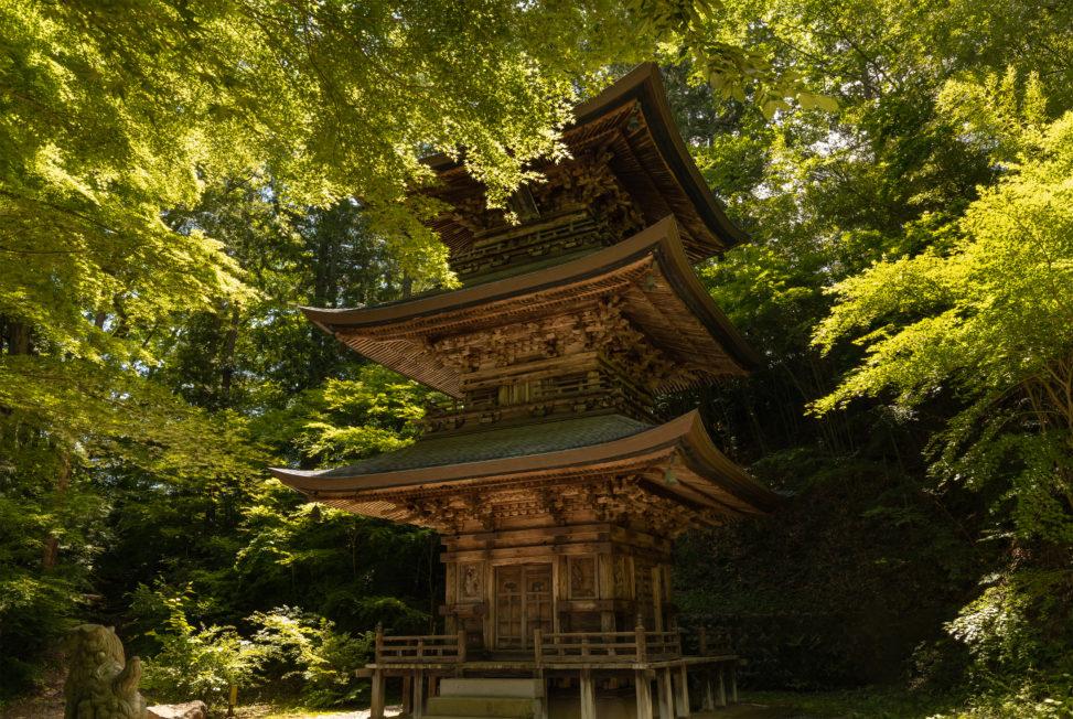 三重塔と新緑の樹々02のフリー写真素材