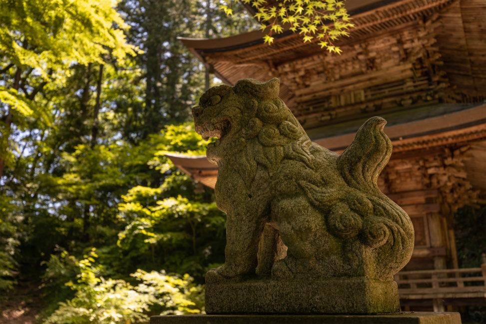 新緑の中の狛犬と三重塔のフリー写真素材