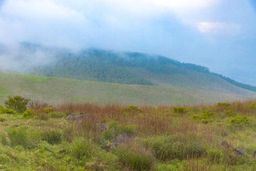 早朝の霧ヶ峰のフリー写真素材
