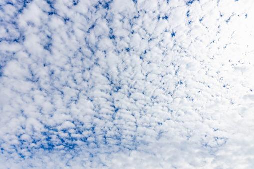 羊雲/ひつじ雲の写真
