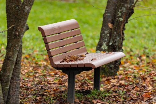 公園のベンチと秋の落ち葉の写真