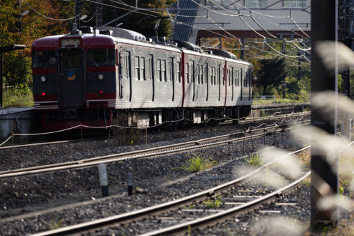 ローカル電車/駅とススキの写真