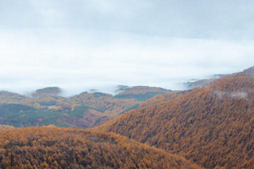 高峰高原の紅葉と雲海の写真