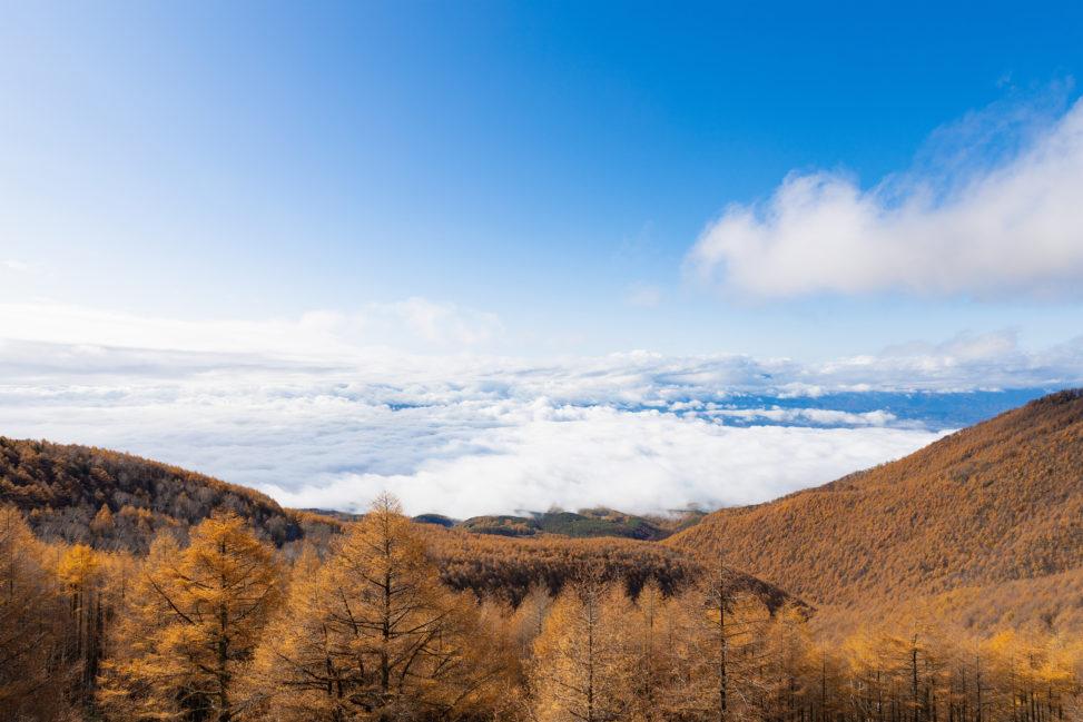 青空/高峰高原/紅葉/雲海の写真