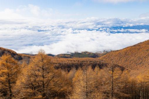青空/高峰高原/紅葉/雲海_2の写真