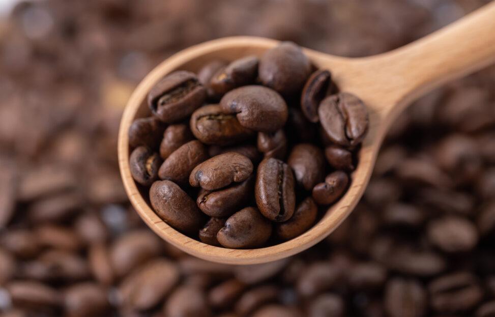 コーヒー豆/珈琲豆とスプーンの写真