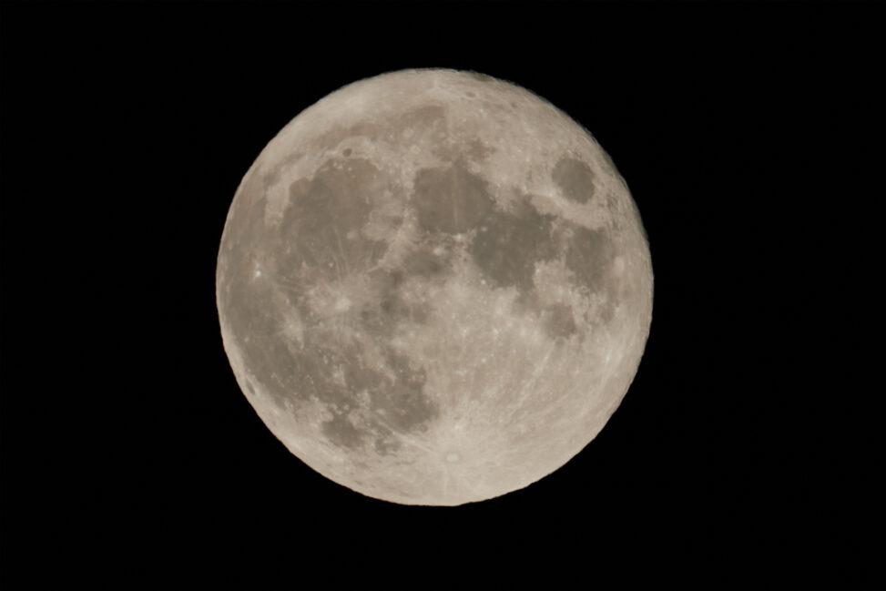 満月(アップ)の写真